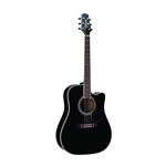 Takamine EF341SC Acoustic / Electic with Case
