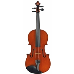 Fraction Sized Violin